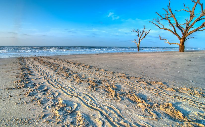 The Edisto Beach, SC Blog