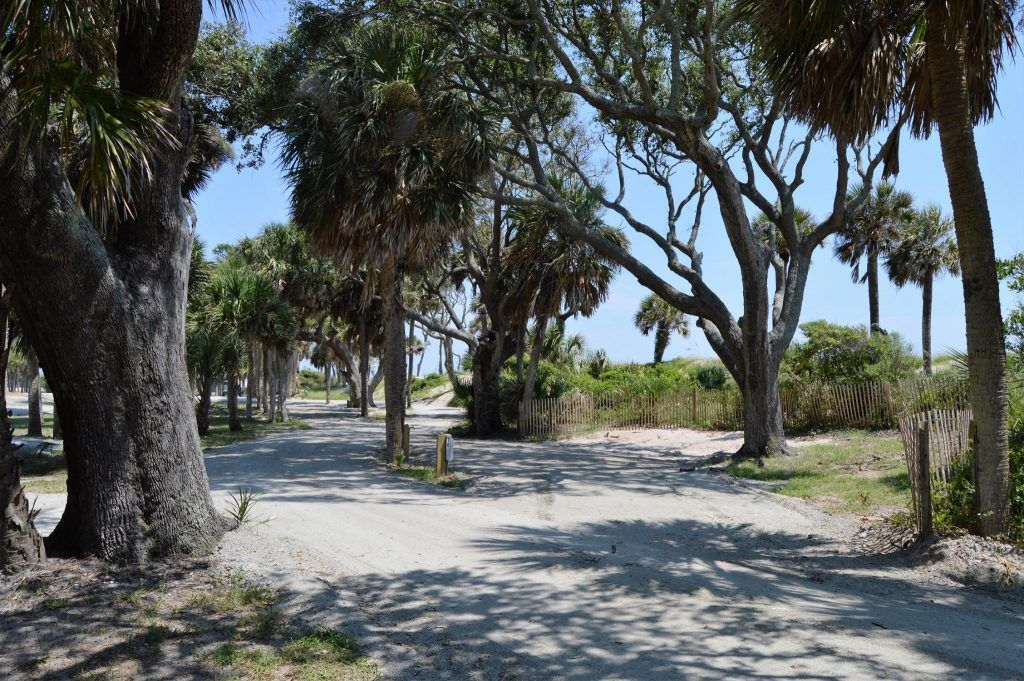 The Edisto Beach Oceanfront Campground Is Open For Business